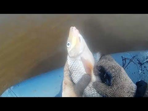 Рыбалка, утро снимаем