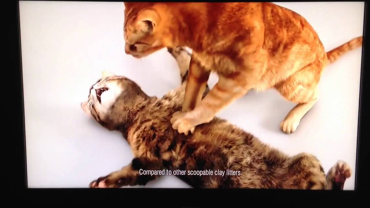 funny cat litter commercial cpr youtube
