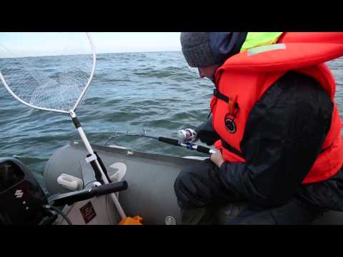 Диалоги о рыбалке. Калининград. Балтийская треска (HD версия)