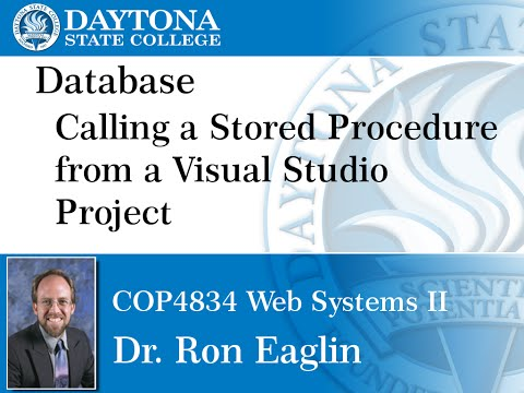 Database - Calling Stored Procedures from Visual Studio
