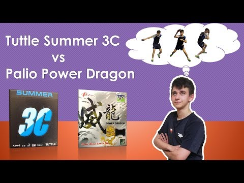 Tuttle Summer 3C Vs Palio Power Dragon | Review | #tabletennisexperts