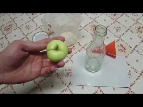 Weck einkochtopf einkochautomat unboxing einwecken ei doovi - Apfelmus einkochen im backofen ...