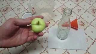Lebensmittel haltbar machen - Apfelmus einkochen und besonders schnell und einfach einwecken