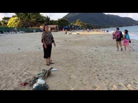 Lamai Beach – Koh Samui 2 Thailand -20-2-16