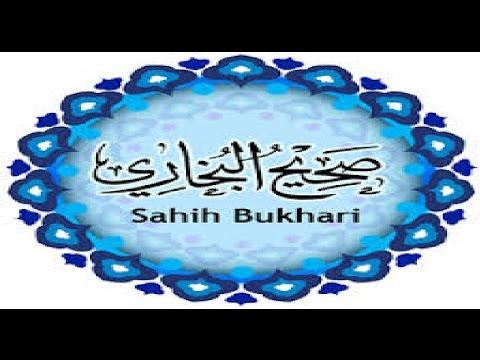 Sahih Al Bukhari عربي (ARABIC AUDIO) 01-07 كتاب بدء الوحى