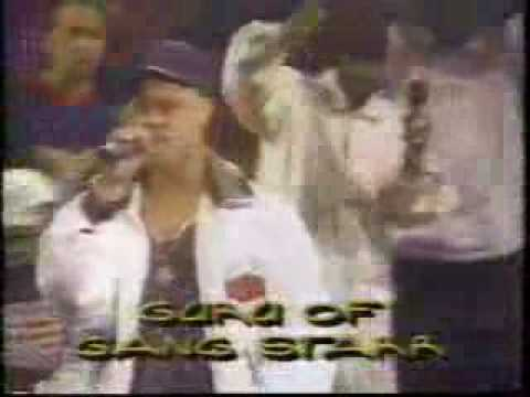 Yo-Yo,MC Lyte,Naughty By Nature,A Tribe Called Quest,Fu-Schnickens,CL Smooth,Guru,Das Efx,Wu-tang Clan,KRS-One