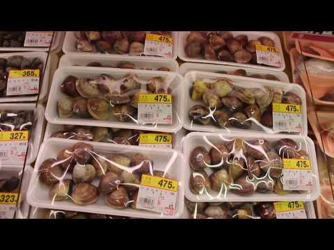 Японский продуктовый магазин. Цены, ассортимент. Рыбный и алко отделы