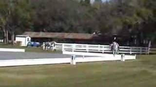 samantha and tooney tl3 at dancing horse dressage 3 2 2008
