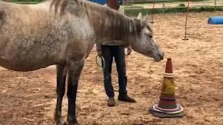 Hoop throwing with Libby משחק החישוקים עם ליבי
