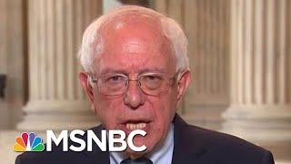 Sen. Bernie Sanders Talks 2020 Race, Escalating Tensions With Iran | Andrea Mitchell | MSNBC