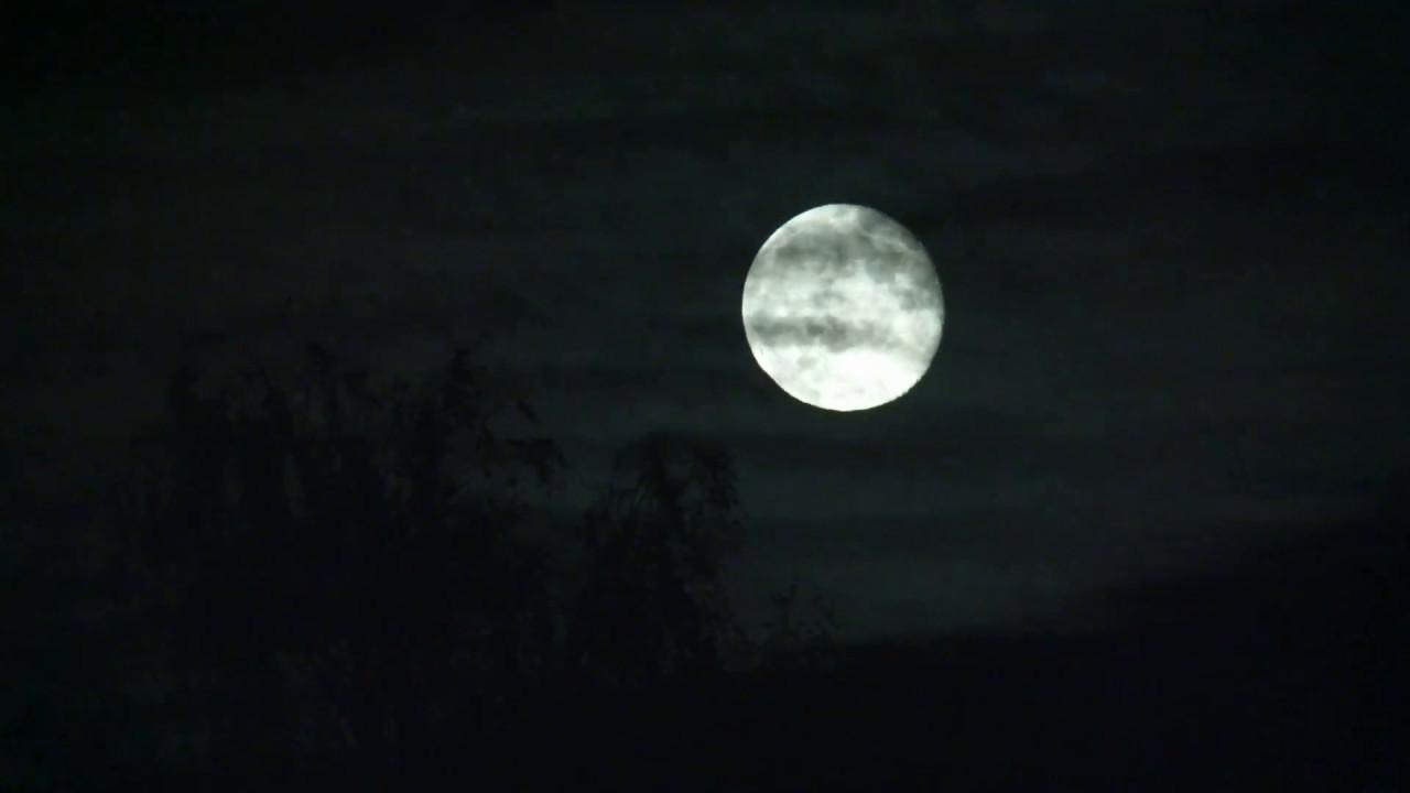 Moon Giant Youtube