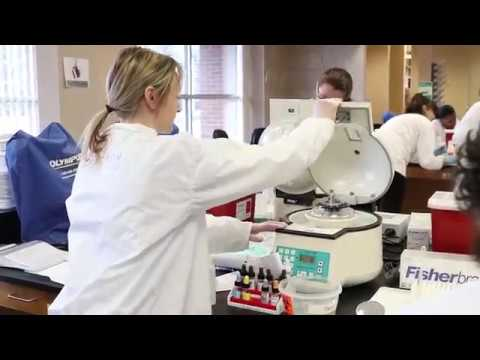 Medical Laboratory Technology Program at Stark State College