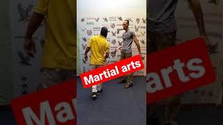 martial arts and self defense ☑️