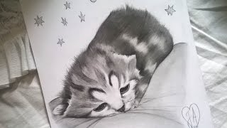 How to draw a cat ♥