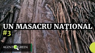 UN MASACRU NATIONAL #ep3 Parcul National Cheile Nerei Beusnita