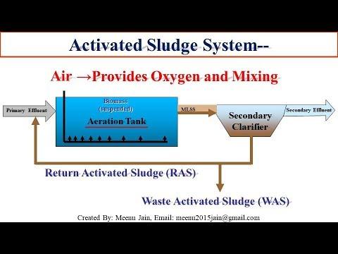 Activated sludge, MLSS, FM Ratio, Returned activated sludge | sewage