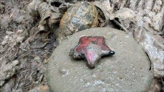 Подъем четырех без вести пропавших солдат. Раскопки в Рамушевском коридоре смерти / WW2