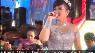 cinta terlarang csNABILA vocal elya sanjaya,sinar abadi video shooting live kepatihan selogiri