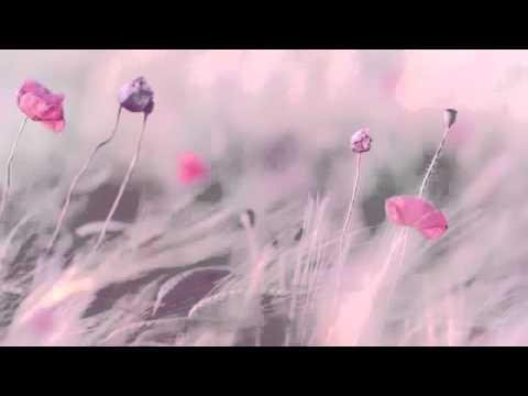 3 Saat En İyi Dinlendirici Müzik Relax Romantik Piyano Fon Müziği Spa Terapi Aşk