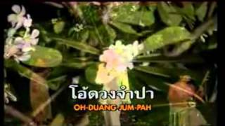 Video DUANG CHAMPA ( Orawee sujjanon ) download MP3, 3GP, MP4, WEBM, AVI, FLV Juni 2018
