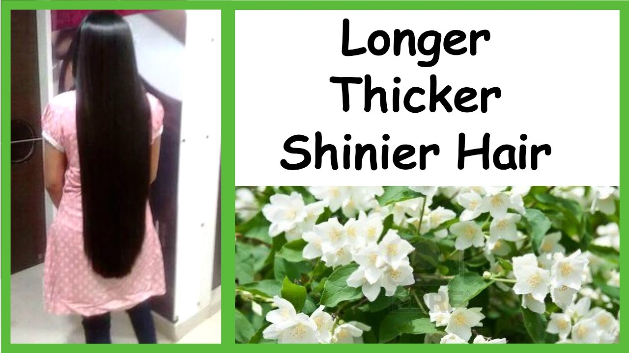 How To Get Healthy Thick Long Hair Naturally