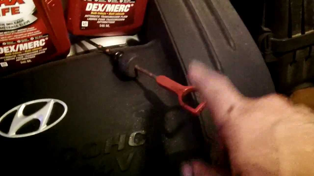 2004 hyundai elantra manual transmission fluid