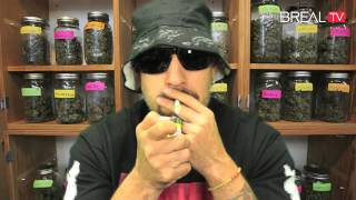 Dr. Greenthumb Strain Review - Chocolate Chip Cookies | BREAL.TV