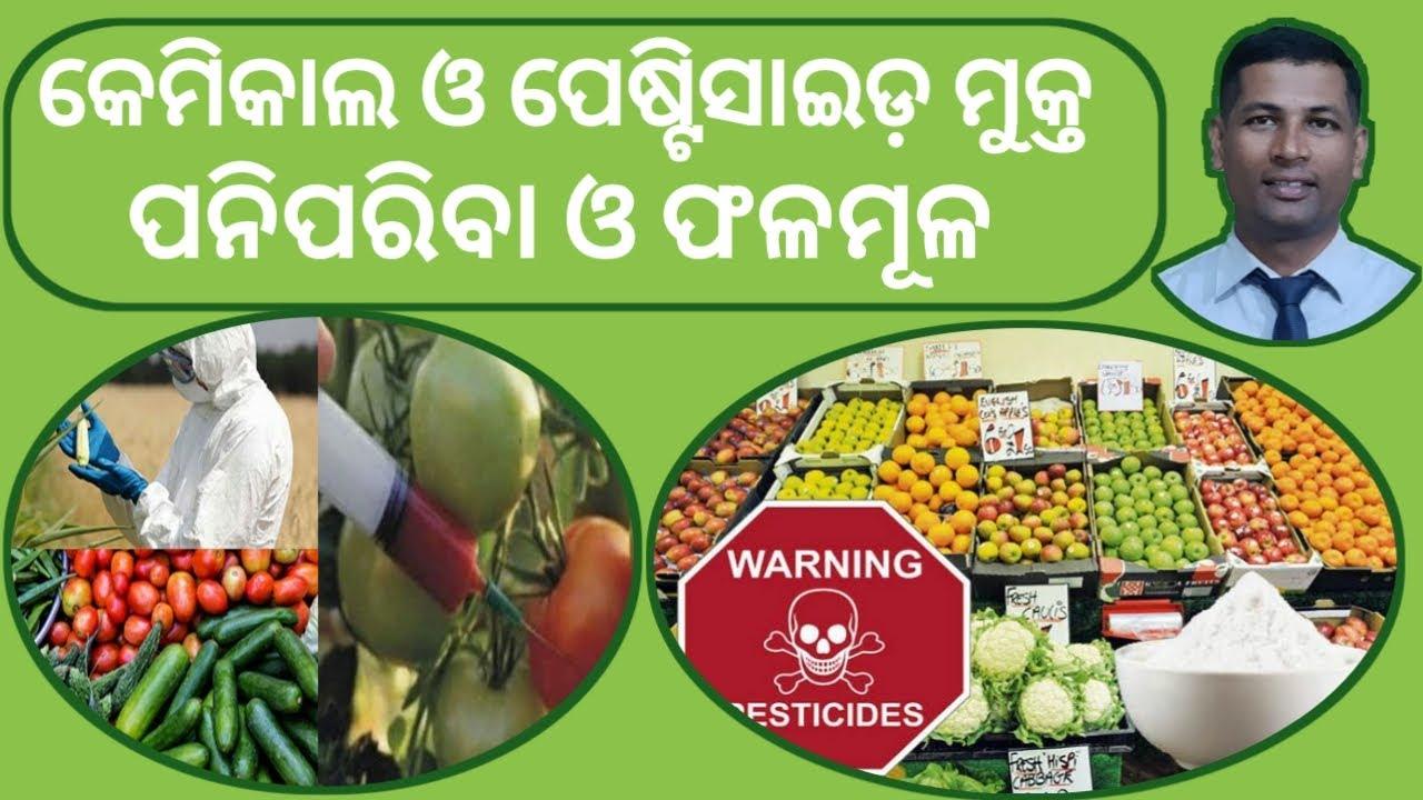 ପନିପରିବା ଓ ଫଳମୂଳ ରୁ କେମିତି Chemical ବାହାର କରିବେ | How to Remove Pestiside Fruits & Vegetable |