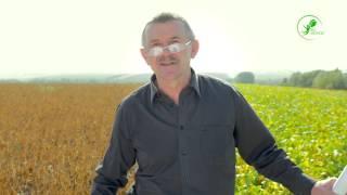 Технологія вирощування сої М Гриньова та БІОМЕТОД