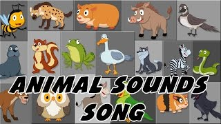 Animal Sound Song | These Are The Sounds That Animals Make |Rhymes By PlayTime