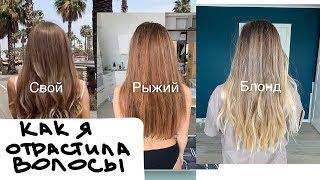 Как я отрастила волосы за 3 года и испортила их?!