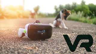 Merlin Immersive 3D VR Headset Full Review
