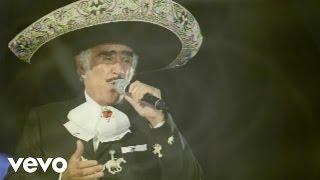 Vicente Fernández - Hilos De Plata (Audio)