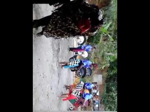 Kuda kepang Padureso