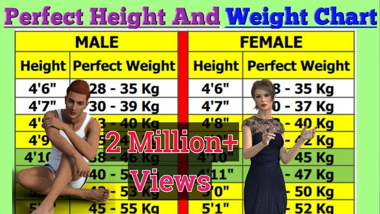 Idealheightandweightchart perfectweightaccordingtoyourheight also perfect height and weight chart for men woman youtube rh