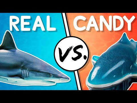 We Try the Ultimate Real vs Candy Challenge