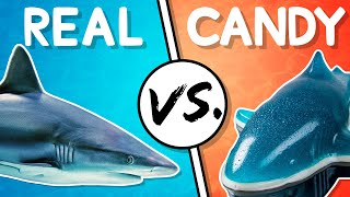 Download We Try the Ultimate Real vs Candy Challenge Mp3 and Videos