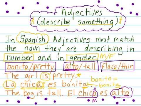 Spanish Nouns Adjectives Number Gender Agreement Youtube