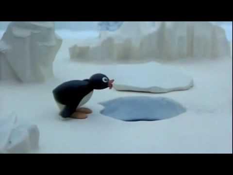 Pingu! No!