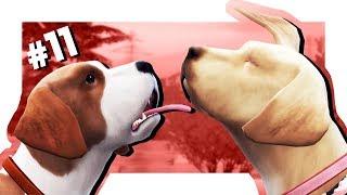 The Sims 4 Кошки и собаки #11 СПАРИВАЕМСЯ!