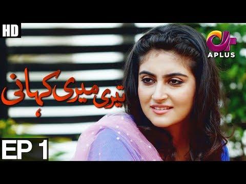 Yeh Ishq Hai - Teri Meri Kahani - Episode 1 | A Plus ᴴᴰ Drama | Agha Ali, Hiba Qadir, Fahad Rehmani