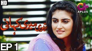 teri-meri-kahani---episode-1-a-plus-drama-agha-ali-hiba-qadir-fahad-rehmani