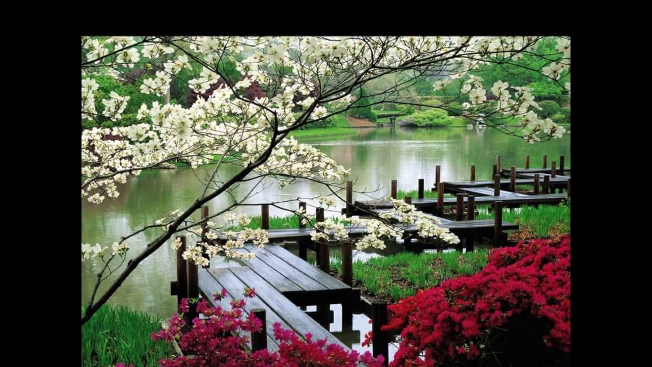 Jardines japoneses hd 3d arte y jardiner a dise o de for Disenos de estanques para jardin