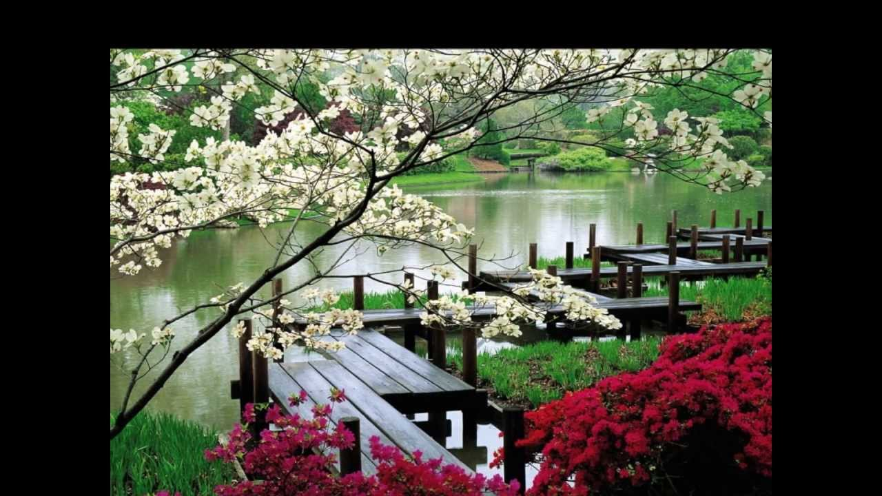 jardines japoneses hd 3d arte y jardinera diseo de jardines youtube - Jardines Japoneses