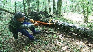 ЧУТЬ НЕ ПОТЯРЯЛ СОЗНАНИЕ, КОГДА УВИДЕЛ ЧТО ТАМ БЫЛО! Обнаружил в лесу под деревом. Коп.