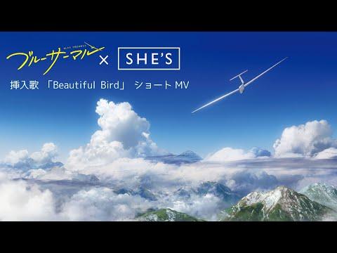 映画『ブルーサーマル』挿入歌「Beautiful Bird」(SHE'S)ショートMV/2022年3月公開