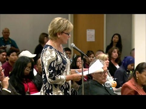Officials Hold Public Hearing On Driver's Licenses For Illegal Immigrants
