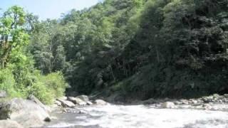 Srikanto Acharya