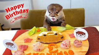Otter Happy Birthday Cake Surprise Party!