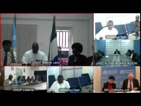 Guinea, Sierra Leone, Liberia, Mali on Ebola: A threat to sustainable development – ECOSOC